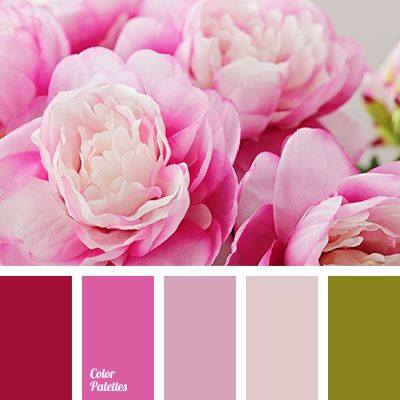 Is This Your Color Palette?
